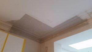 Plafond met mouluren opnieuw gepleisterd na vernieling door huiszwam.